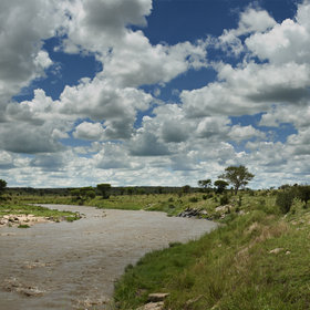 Mara River Tented Camp is set in the beautiful Lamai triangle...