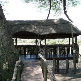 ...and there's also a hide where guests can sit and watch the animals come down to drink