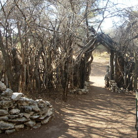 The whole camp is is surrounded by stick palings spaced to allow access at intervals.