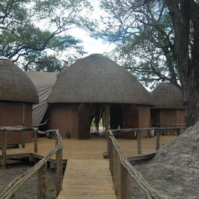 The camp Okuti nestles in the shade of large, old tree and overlooks the Xakanaxa lagoon.
