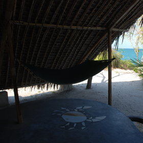 ...with a hammock for afternoon siestas...