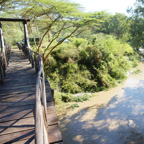 Vehicles stay on the national park side of the Mbagathi River…