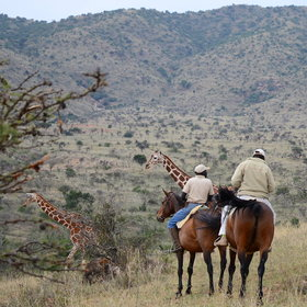 Gamewatching on horseback is another of Borana's special activities…