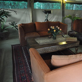 The camp's feel – tropical plants, cut flowers – is more stylish than you might expect.