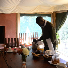 The service at Kicheche Laikipia is always attentive and efficient…