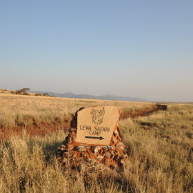Lewa Safari Camp is one of only two tented camps in the whole of the Lewa Conservancy.