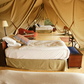 …and some of the biggest bedrooms we've ever seen in a tented camp…