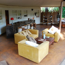 Relax on one of the modern and comfortable sofas and enjoy the view into the forest.