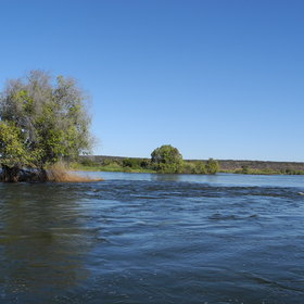 … in the mighty Zambezi River…