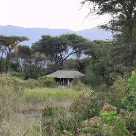 Lemala Manyara is an authentic tented camp located in Manyara National Park...