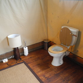 ...and a flush toilet...
