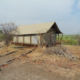 Linyanti Ebony is a traditional tented camp situated on the edge of the Linyanti Marshes.