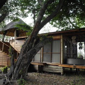 Hidden amidst riparian woodland are nine split-level safari suites...