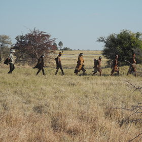 ...nature walks with Bushmen who show their traditional hunting and gathering skills...