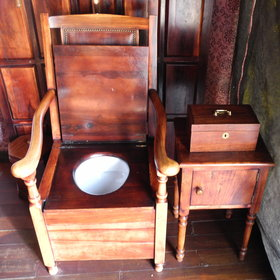 ...a quirky throne flush toilet...