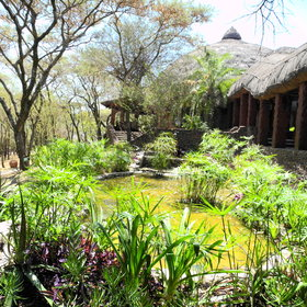 Ponds and streams add a tranquil feel to the lodge.