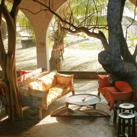 …that includes a welcoming lounge under lovely tree trunks…