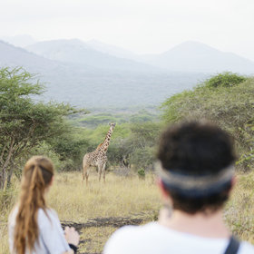 As well as horse-riding and game drives, activities include bush walks near the lodge…