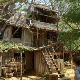 As well as the small hut-style rooms, there's the Tree House suitable for a family or group…