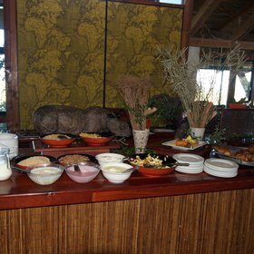 Food at Kariega Main Lodge was adequate; the best meal was the second breakfast.