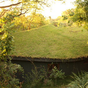 which have grass roofs - allowing them to blend into the surroundings.