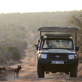 Activities at Laikipia Wilderness are highly varied and include game drives...