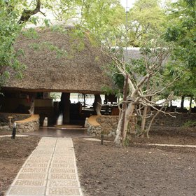 Mvuu Camp in the Liwonde National Park,
