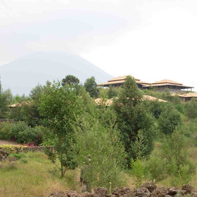 Virunga Lodge has the volcanoes of the Virunga Mountains as a stunning back drop.