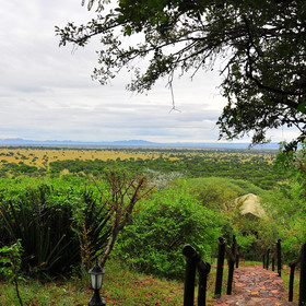 Kirawira Camp is part of the Serena chain of hotels and lodges.