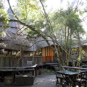 Phantom Forest is located in the Phantom Forest Nature Reserve on the Garden Route.