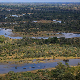 The Selinda Spillway has many twists and turns as it wends its way across northern Botswana.