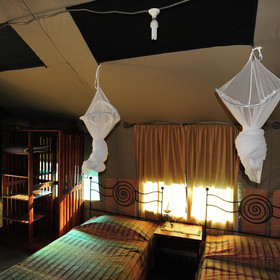 Two twin beds are covered by individual mosquito nets and an electric light illuminates each tent