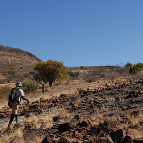 Walking safaris in Namibia