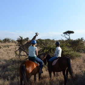 Riding holidays in Kenya