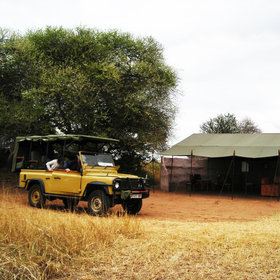 You can explore the area on a 4WD game drive…