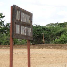 Scheduled flights in small aircraft land at one of two bush airstrips in the park