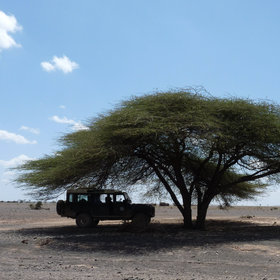 The desert is austere, vehicle breakdowns common, and water scarce.