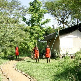…entirely staffed by Maasai warriors and elders, who take guests on walks…