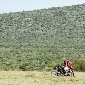 East of Ol Kinyei, lies Siana Group Ranch, which is becoming a conservancy…