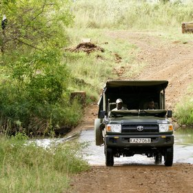 Every game drive involves traversing these, making rainy seasons quite adventurous.