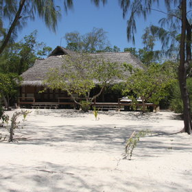 Vamizi is currently the most luxurious beach lodge in the Quirimbas…