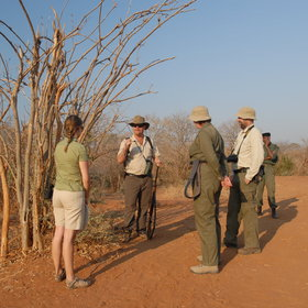 Walking safaris with professional guides are available from all of the camps ...