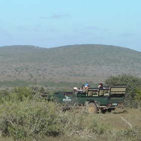...and 4WD safaris - both with a very high standard of guiding.