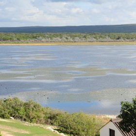 At the edge of De Hoop's large wetland...