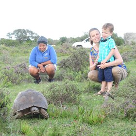 Other guided activities in the reserve include tracking tortoises for children…