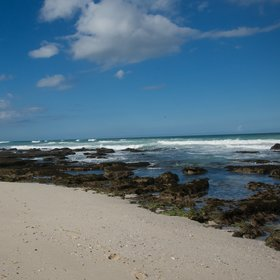 ...at De Hoop's beautiful coastline.