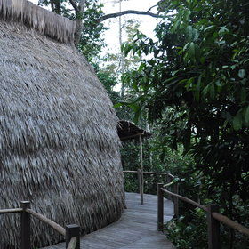 The rooms at both camps, though pictured here at Lango, are thatched..