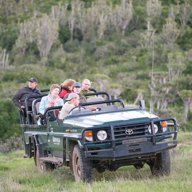 4WD safaris in Kariega will mainly take you into the Western part of the reserve though,…