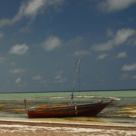 Zanzibar is tidal, and so the sea can go out a long way making a pool an important feature.
