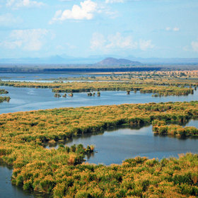 Liwonde National Park is an area of natural beauty lying along the banks of the Shire River.